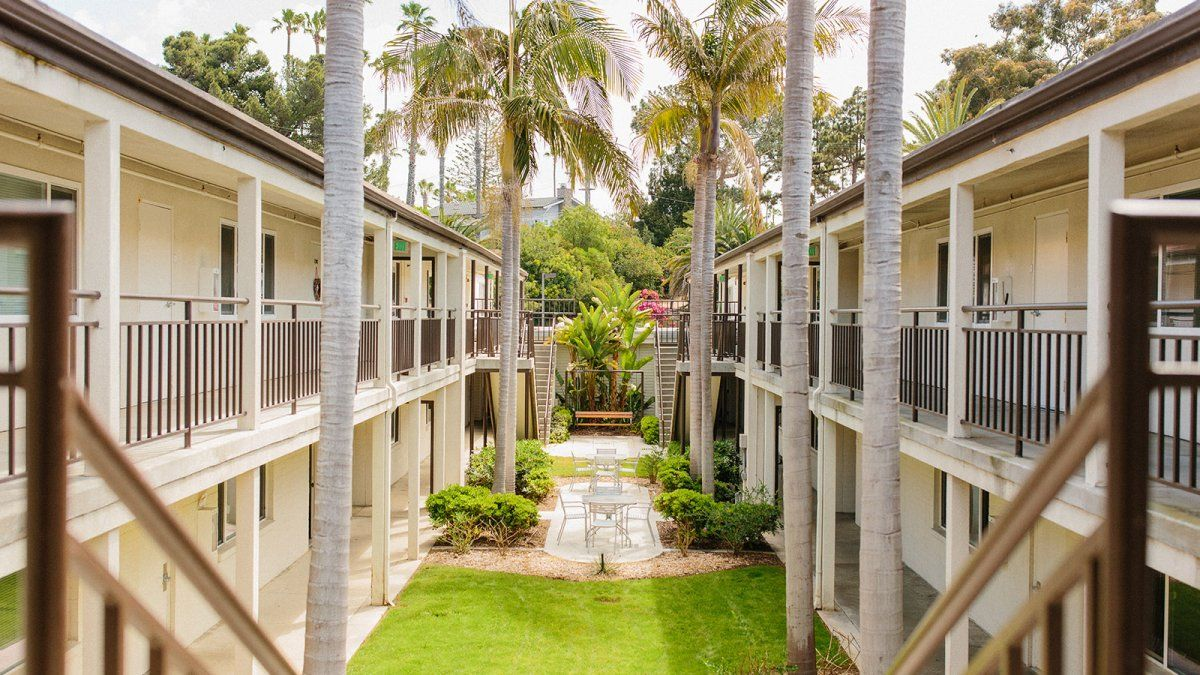 The center courtyard of Finch Hall with palm trees and grassy lounging space.