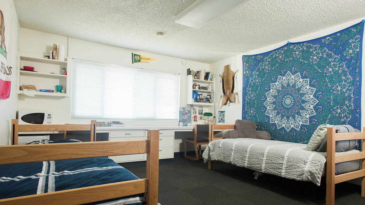 A spacious room for two in Wiley Hall.