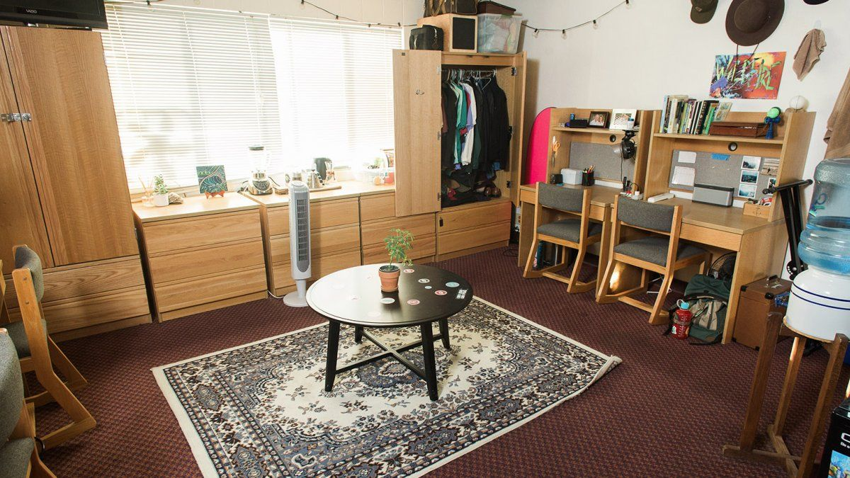 Young Hall Four Person Rooms Still Give Students Space For Fun And Decorations