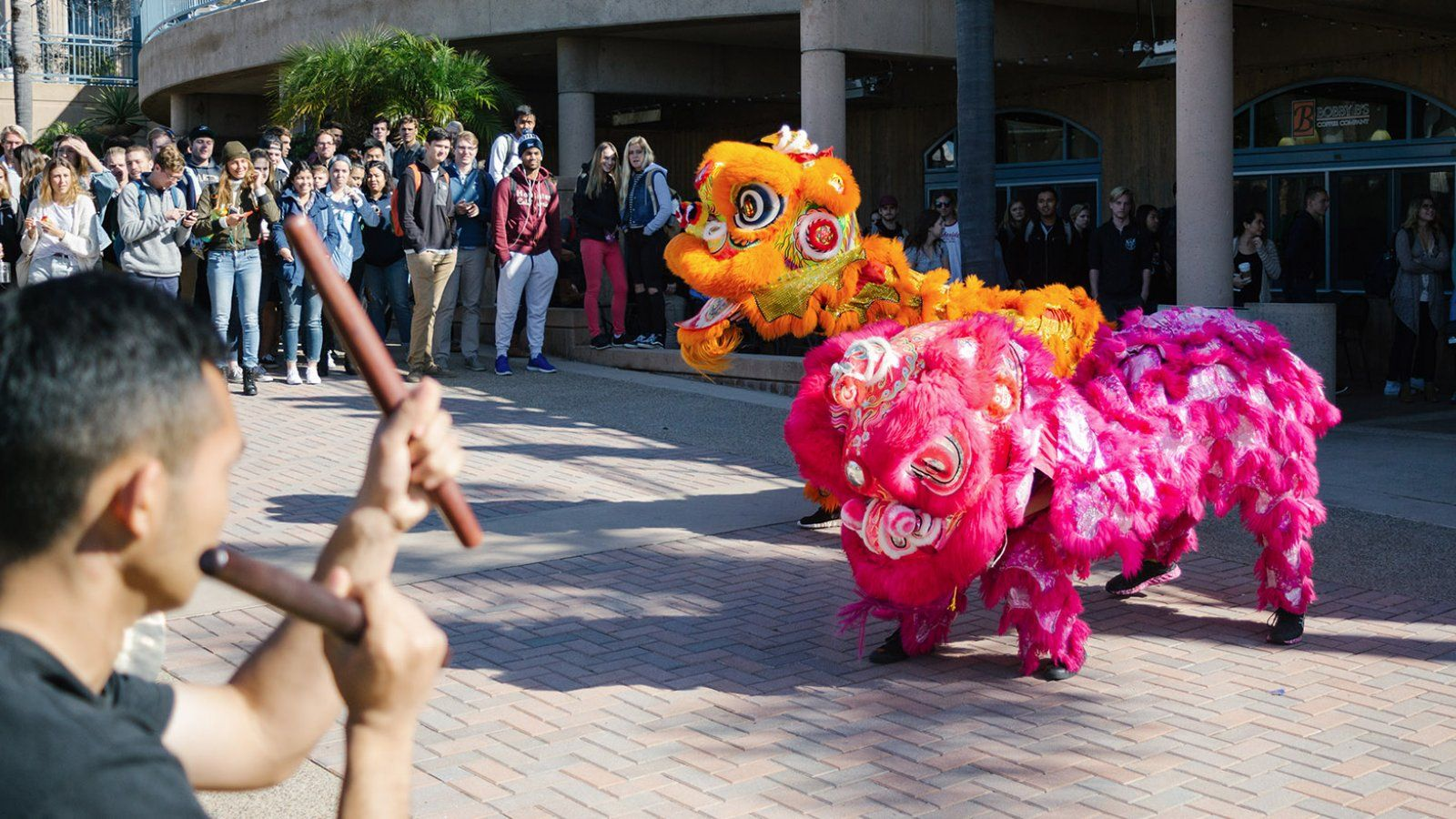 The Lunar New Year celebration begins on the Campus Mall.