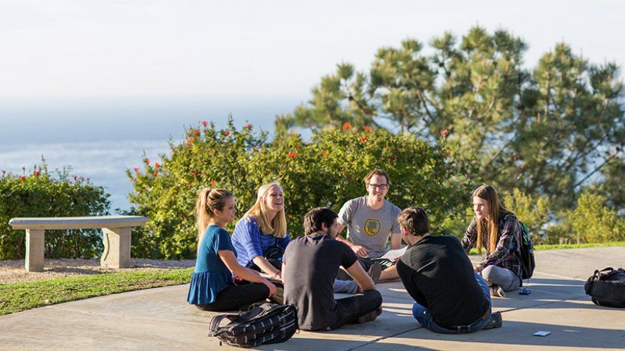 A group of students sit in a circle and talk about a project in McCollough Park