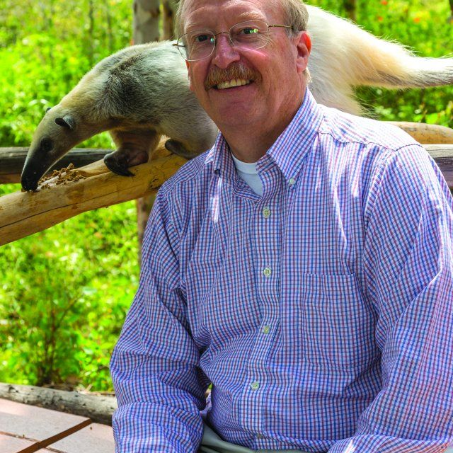 Bob Wiese sitting with an ant eater walking a log just behind his head