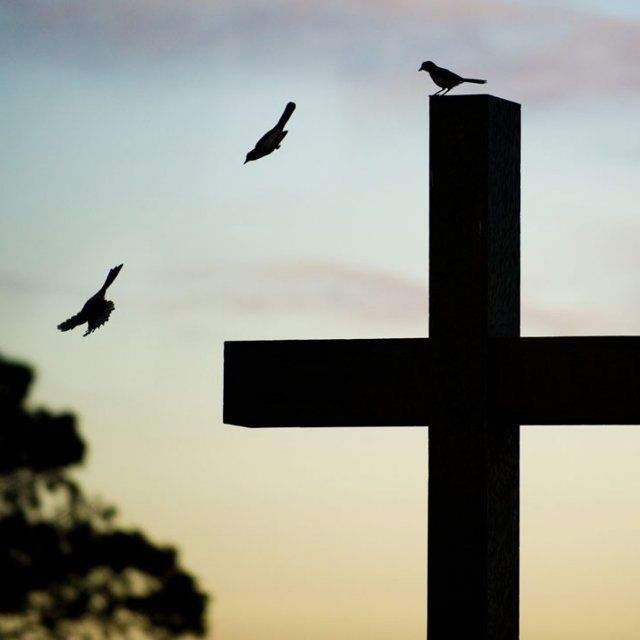 A cross at sunset with a bird perched on top and then caught in flight